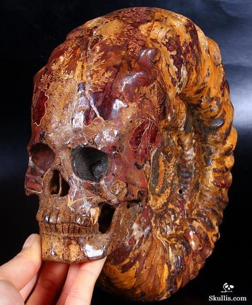 Skullis 1