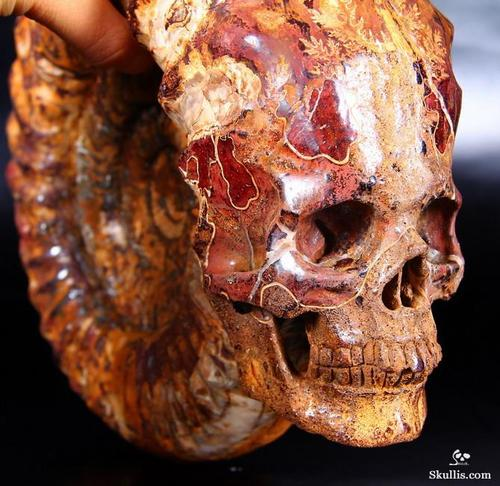 Skullis 2