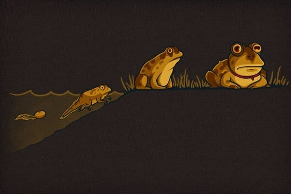 Evolution-of-Hypnotoad_42431-l