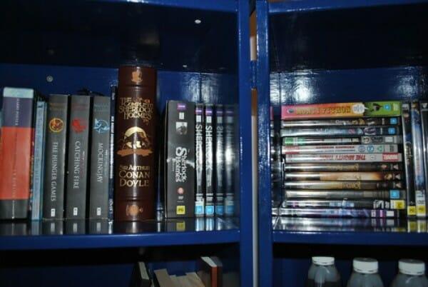 Tardis bookcase 2