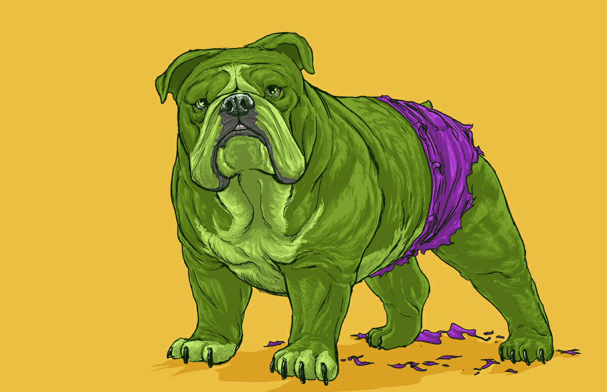 Dogs of the Marvel Universe 8