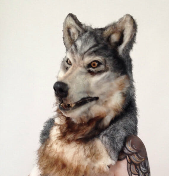 2015-4-wolf