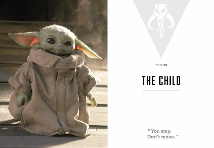 Star Wars The Mandalorian and The Child