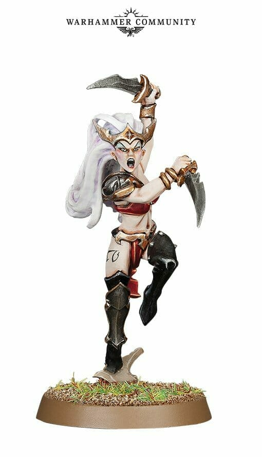 Witch Aelves models